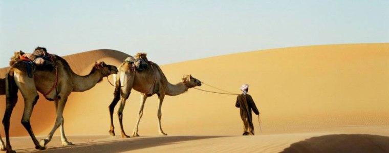Photo from desertsafariabudhabitour.com