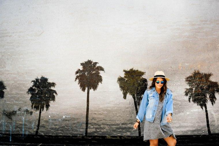 Venice Beach Murals